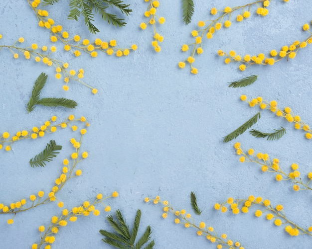 꽃 가지의 프레임 무료 사진