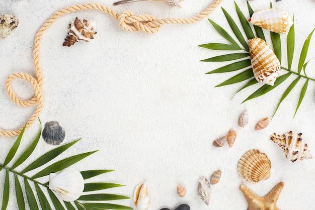 Frame of shells and shellfish Premium Photo