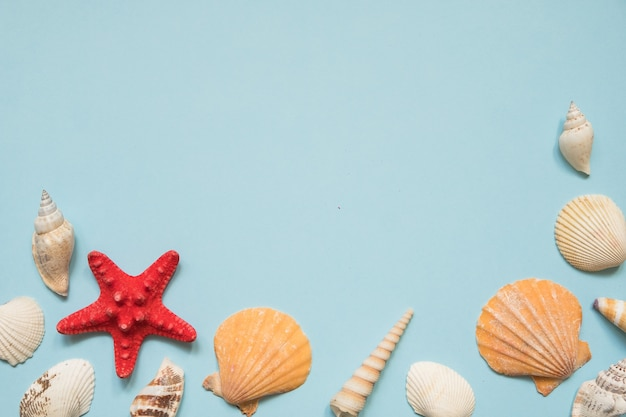 Frame with seashells, red starfish and toy boat on blue sea Premium Photo