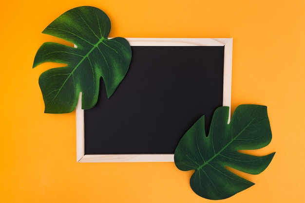 Frame with tropical leaves Free Photo