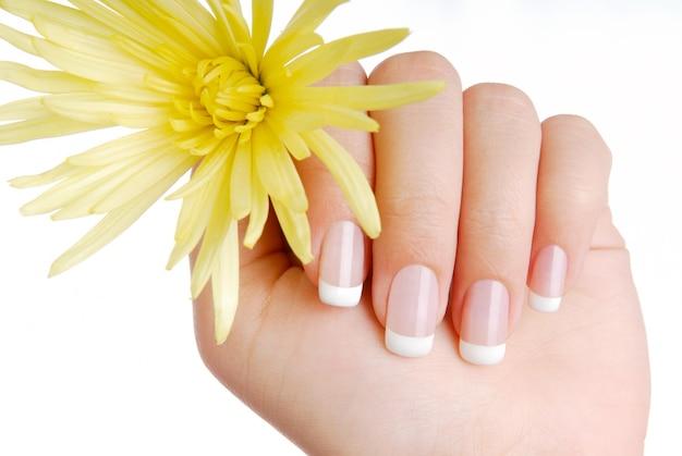 France manicure Free Photo