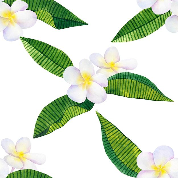 フランジパニまたはプルメリア。白い花と緑の熱帯の葉。手描きの水彩イラスト。シームレスパターン。孤立。 Premium写真