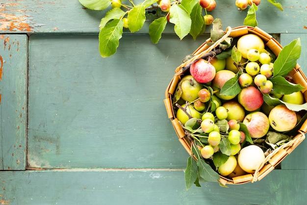 緑のバスケットに新鮮なリンゴ。秋の収穫。上面図。スペースをコピーします。 無料写真