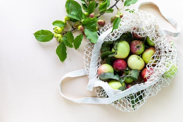 Свежие яблоки в сетке с веткой яблок Бесплатные Фотографии