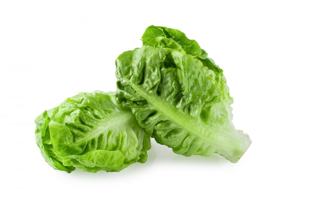 Fresh baby cos lettuce isolated over the white background. Premium Photo