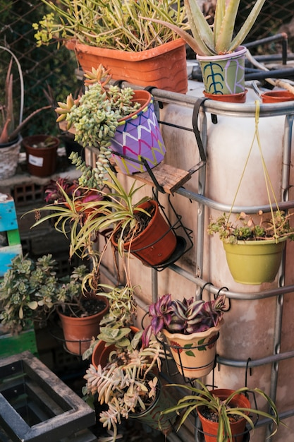Fresh beautiful plants in the painted pot hanging on railing Free Photo