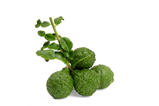 Fresh bergamot with leaf isolated on white background.herb Premium Photo