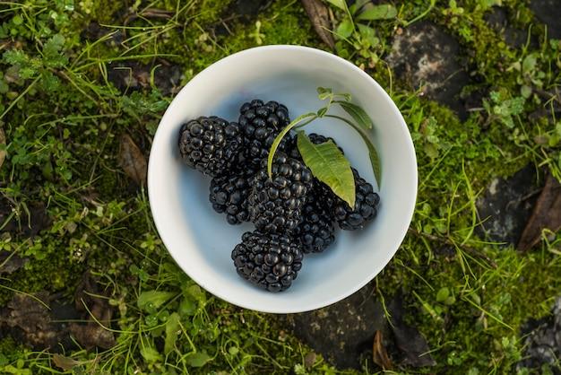 Fresh blackberries on bowl on grass Free Photo