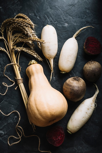 Fresh butternut squash surrounded by veggies Free Photo