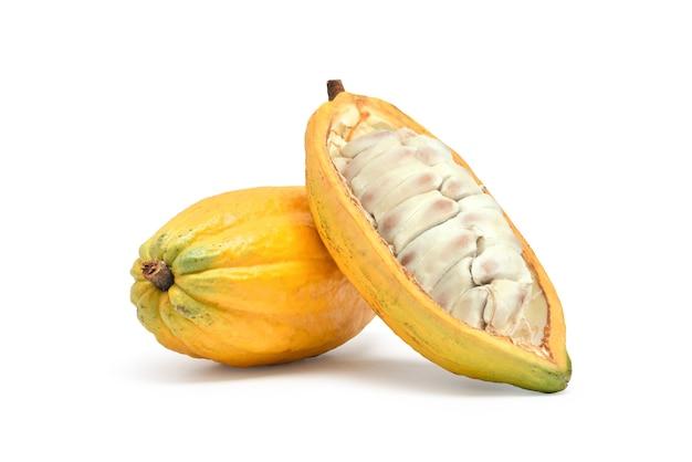 Свежие фрукты какао, изолированные на белом фоне Premium Фотографии