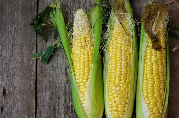 Fresh corn cobs on wooden Premium Photo