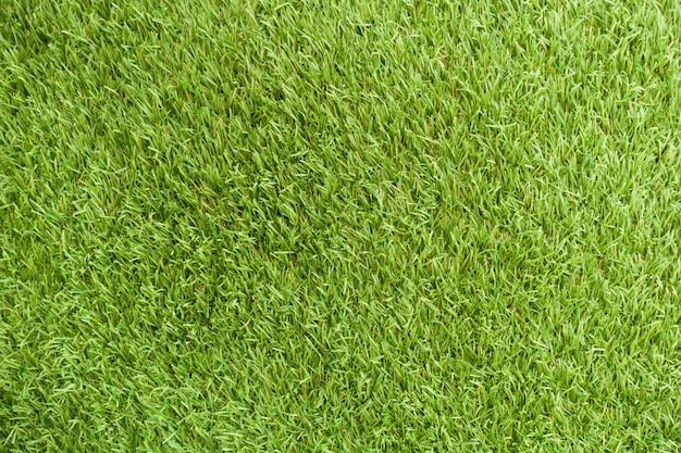 Fresh cover background beautiful stadium grass Free Photo