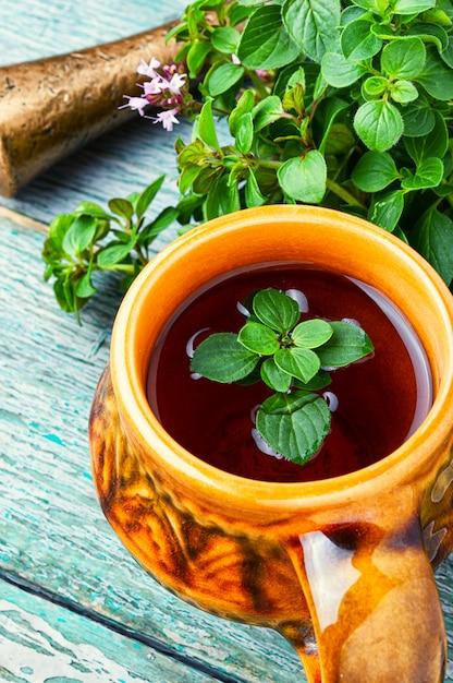 Fresh and dried oregano herb Premium Photo