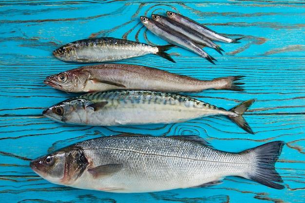 Fresh fish hake seabass sardine mackerel anchovies Premium Photo