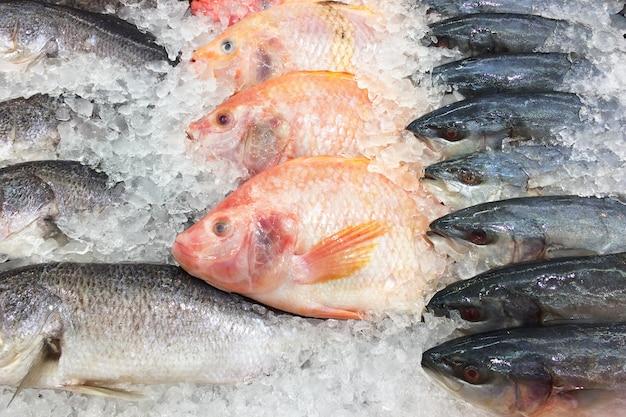 Fresh fish on ice shelf Premium Photo