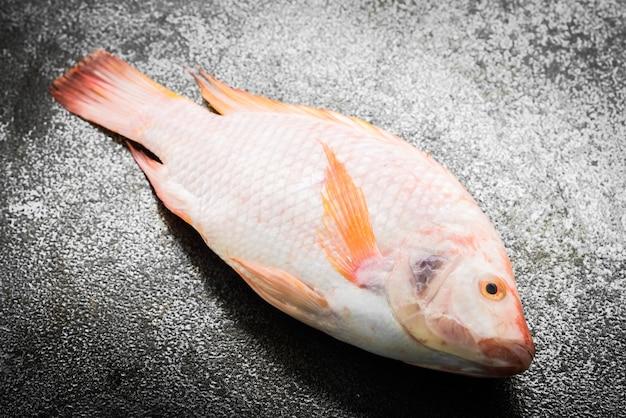 Fresh fish Free Photo