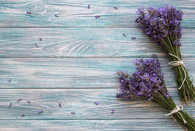 Fresh flowers of lavender Premium Photo