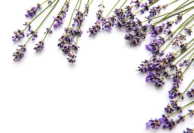 Букет из свежих цветов лаванды Premium Фотографии