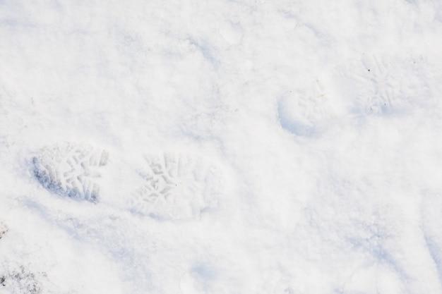 Fresh footprint on snow Free Photo