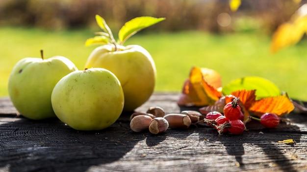 古い木の切り株に新鮮な庭のリンゴとドングリ Premium写真