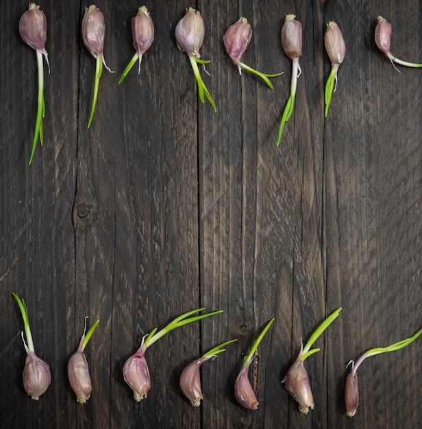 Свежий чеснок с зелеными ростками зародыша на деревянном столе Premium Фотографии