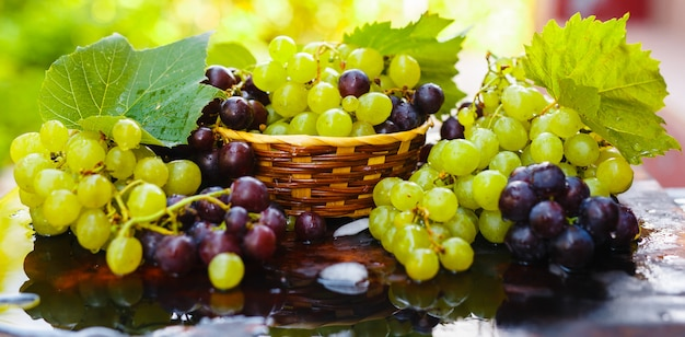 Fresh grapes in a straw basket with water splashes on a rustic wooden table. Premium Photo