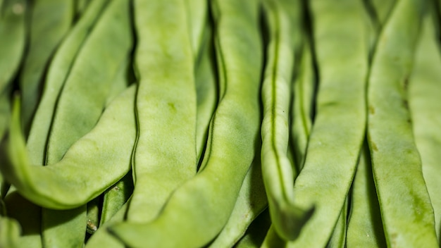 Fresh green beans on market for sale Free Photo