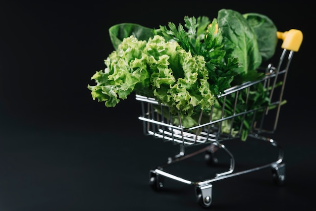 Fresh green leafy vegetables in shopping cart over black background Free Photo