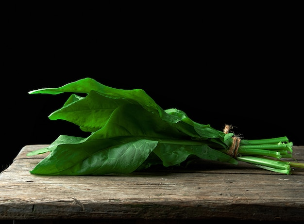 Fresh green leaves of sorrel are bound in a bunch Premium Photo