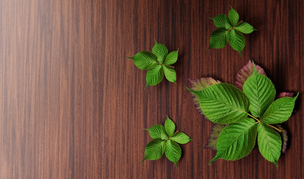 Fresh green leaves on wooden table Premium Photo