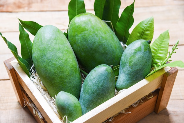 Fresh green mango and green leaves on wooden box top view Premium Photo