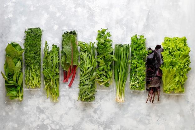 Fresh greens basil, coriander,lettuce,purple basil,mountain coriander,dill,green onion in plastic boxes on grey concrete Free Photo