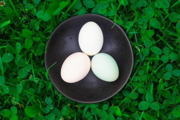 プレート上の新鮮なホロホロ鳥の卵 Premium写真