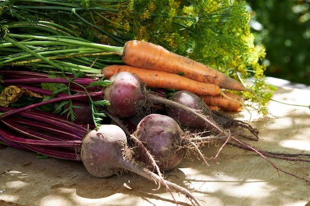 나무 테이블에 유기농 야채의 신선한 수확 프리미엄 사진