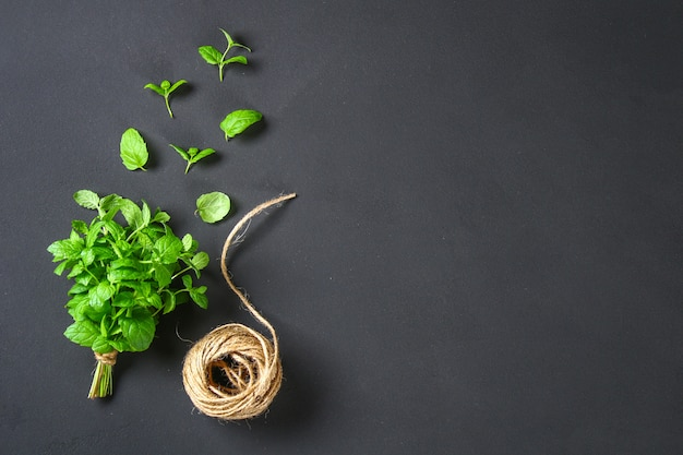 Fresh homemade green peppermint Premium Photo