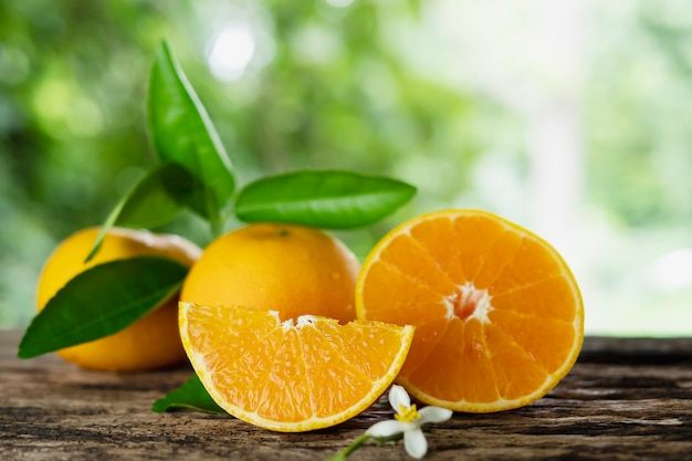 Fresh juicy orange fruit set over green nature Free Photo