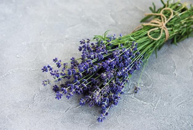 Fresh lavender flowers Premium Photo