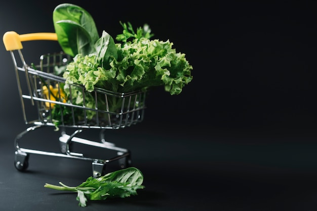 Fresh leafy vegetables in shopping cart on dark backdrop Free Photo