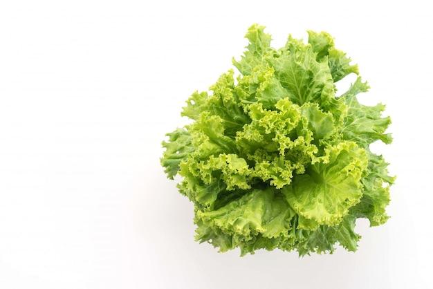 Fresh lettuce Free Photo