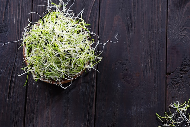 Fresh micro greens onion, sprouts for healthy salad. Premium Photo