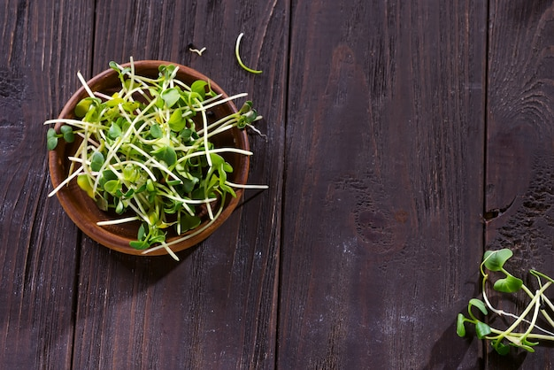 Fresh micro greens radish, sprouts for healthy salad. Premium Photo