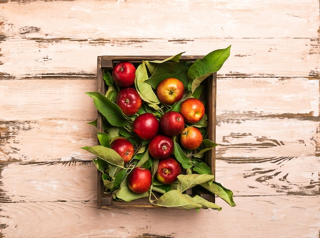 Fresh organic apples in a wooden crate rustic wood Premium Photo