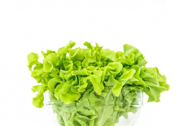 Fresh organic healthy green oak lettuce vegetable in a glass bowl Premium Photo