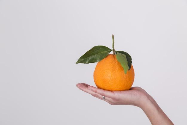 Frutta arancione organica fresca sul palmo della mano di una donna isolata su priorità bassa bianca Foto Gratuite