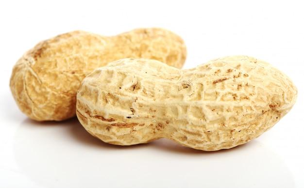 Fresh peanuts Free Photo