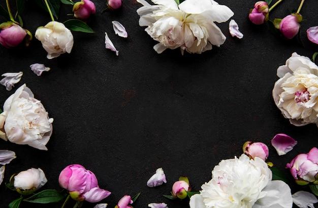 新鮮なピンクの牡丹の花が黒いコンクリート背景、フラットにコピースペースとの国境を置きます。 Premium写真