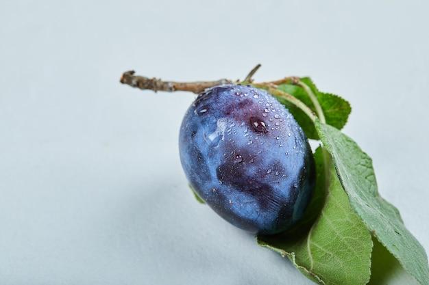Prugna fresca con foglia isolata sull'azzurro. Foto Gratuite