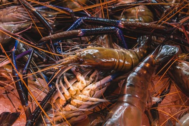 Fresh prawns Free Photo