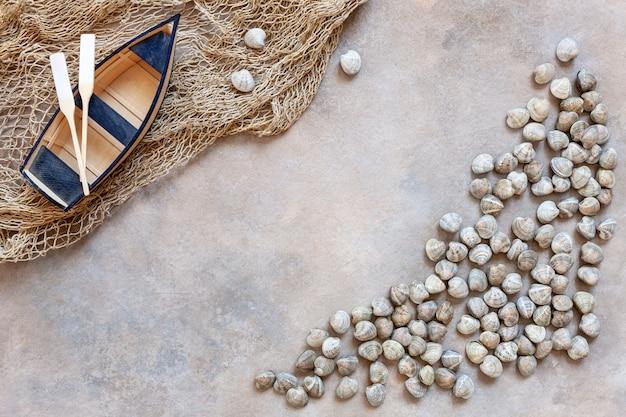 Свежий сырой моллюск surf Premium Фотографии
