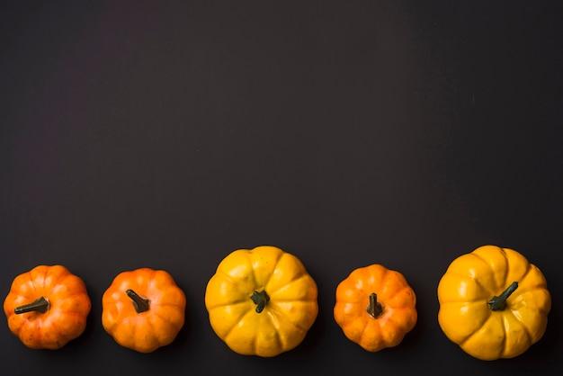 Fresh ripe pumpkins Free Photo